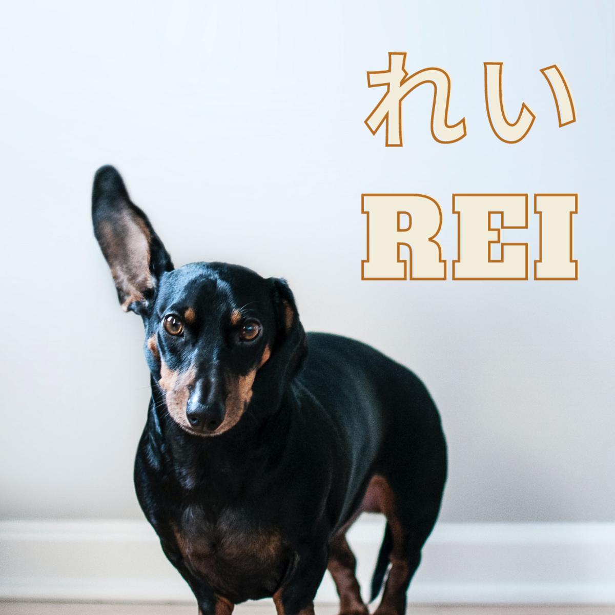 Rei or Zero
