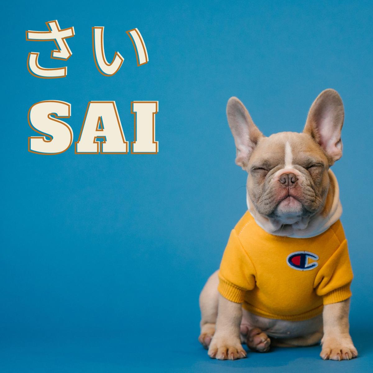 Sai or Rhino