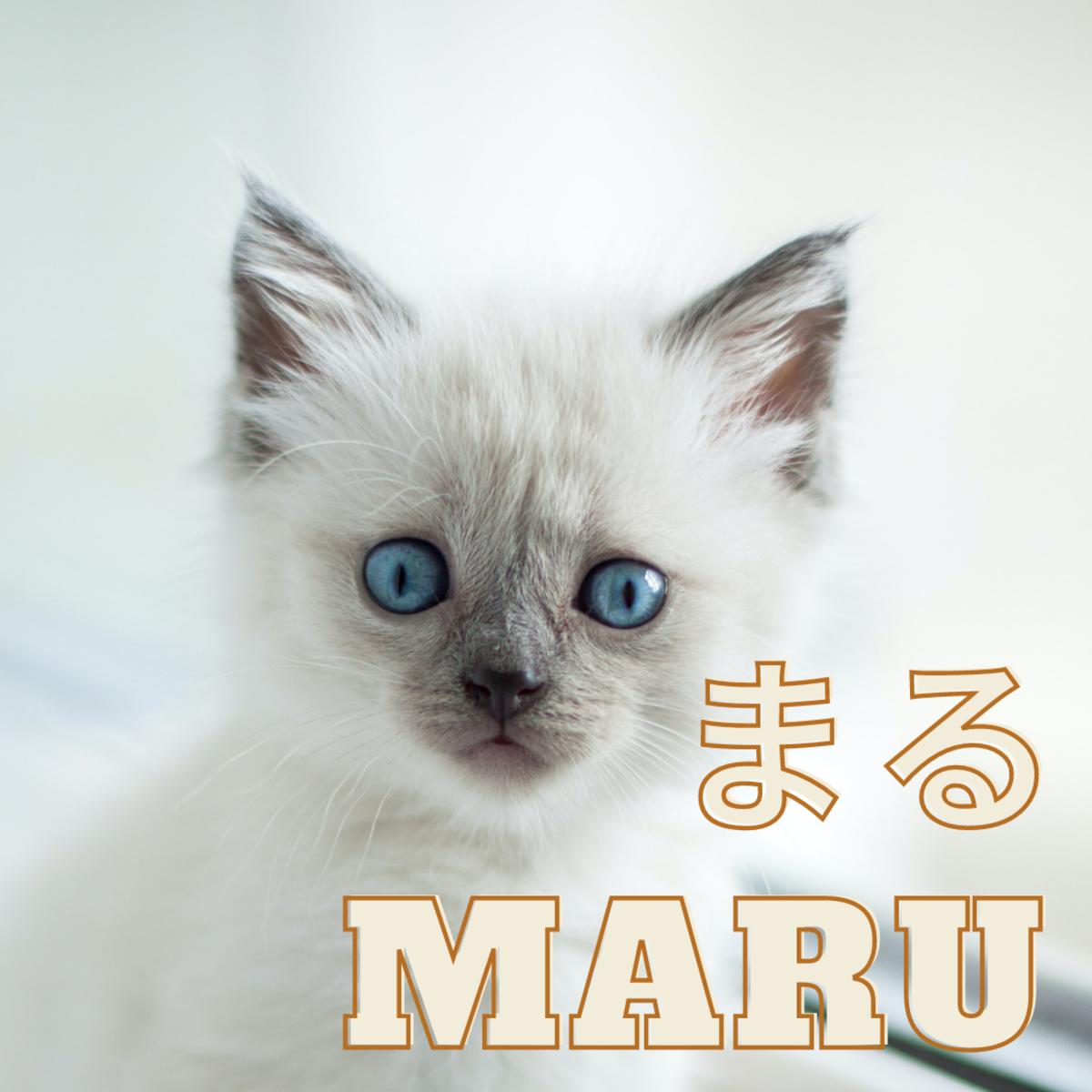 Maru or Circle