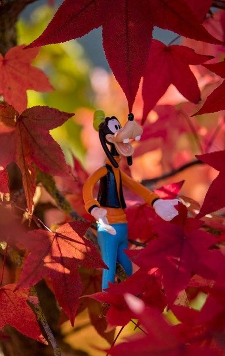 Goofy Toy in Leaves