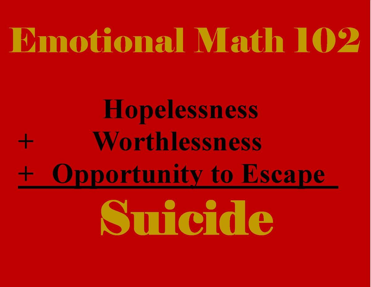 Suicide is the some total only when certain variables come together.