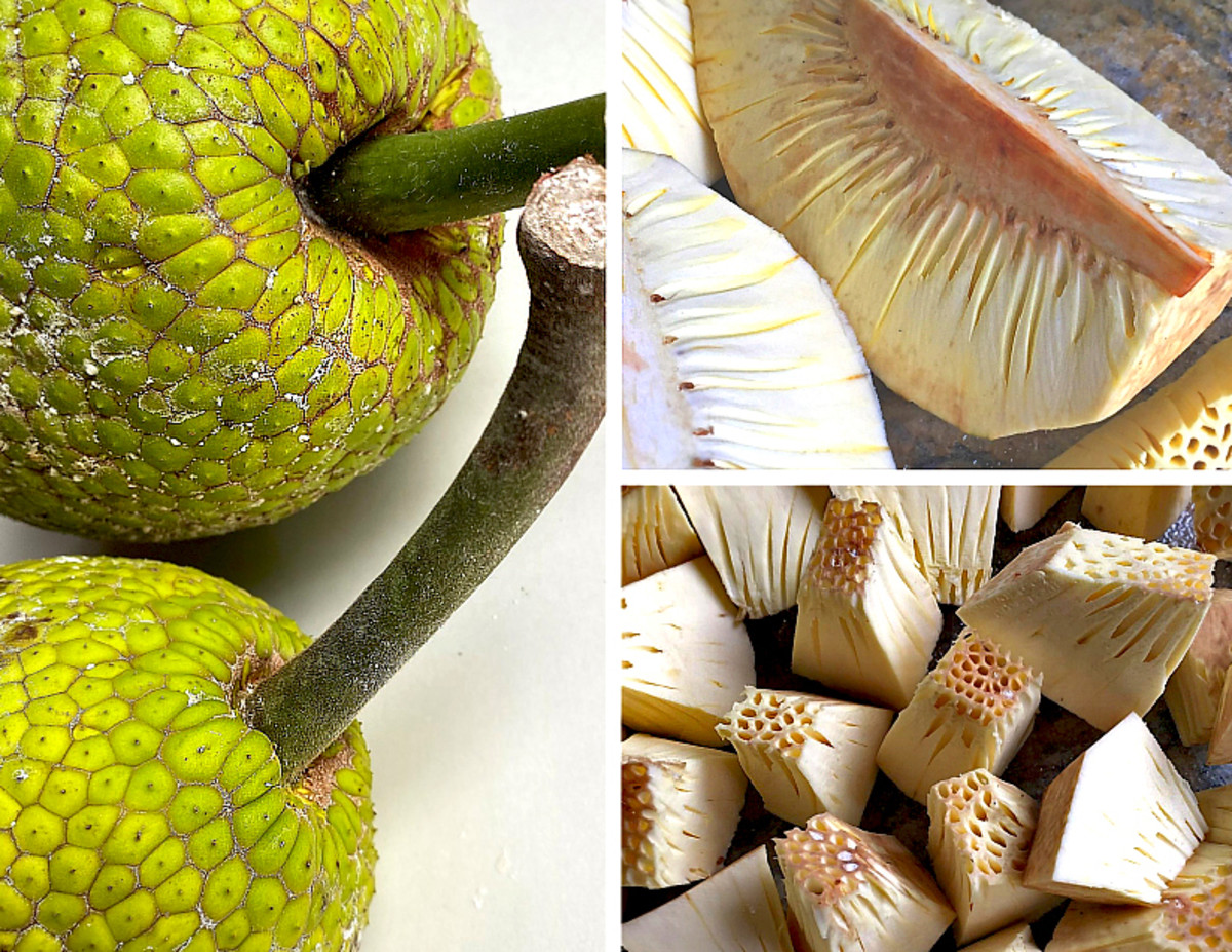 Breadfruit can be steamed whole (with skin), or cut into wedges or small cubes before cooking.