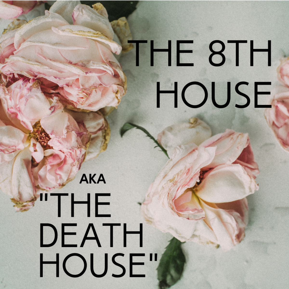 Are you in the 8th House, aka Death House? Find out what that means for you.