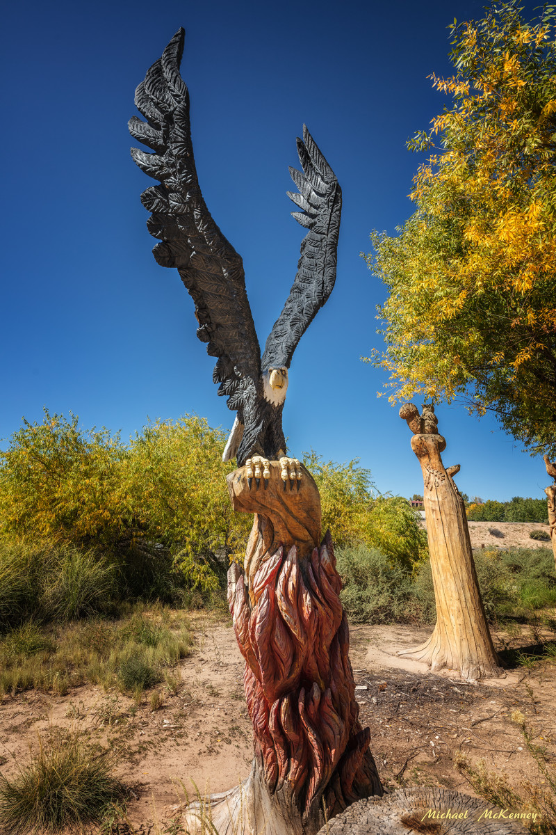 Chainsaw carving of an eagle created by professional carver Mark Chavez who carved all of the work shown in these photographs at the scene of a 2003 fire in Albuquerque.  They are carved from remaining tree trunks at the site.