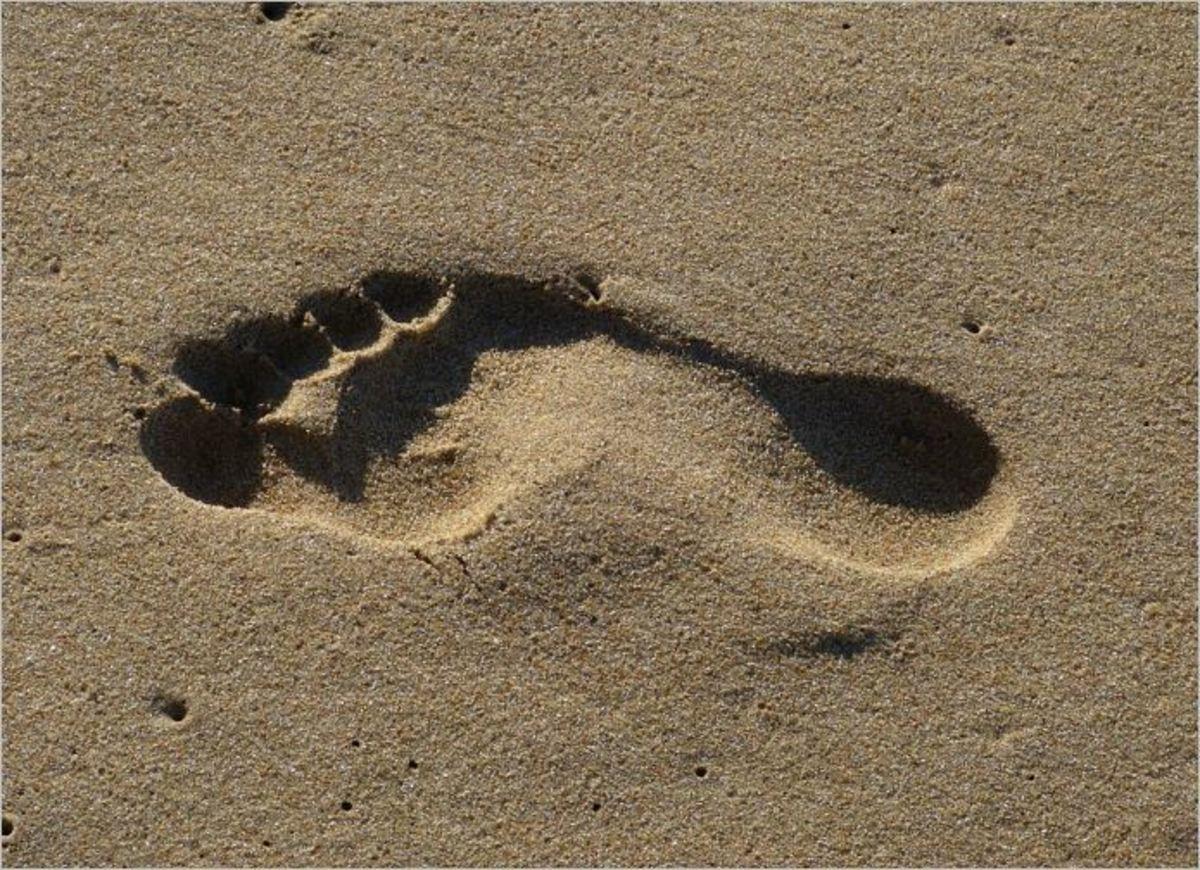 the-desert-sands