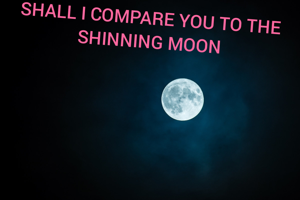 Shall I Compare You to the Shining Moon?