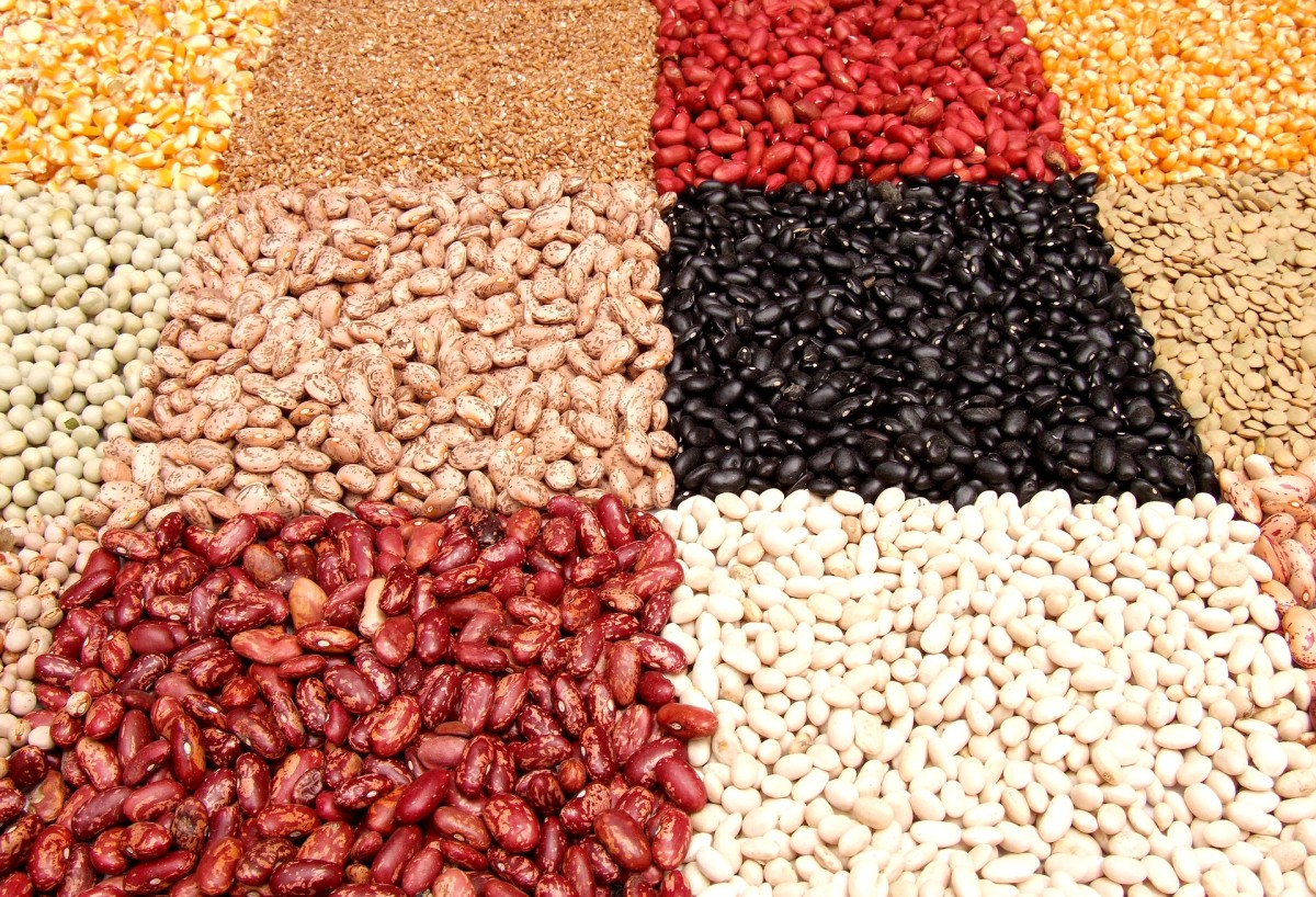 lentil-names-in-hindi-with-english-translations