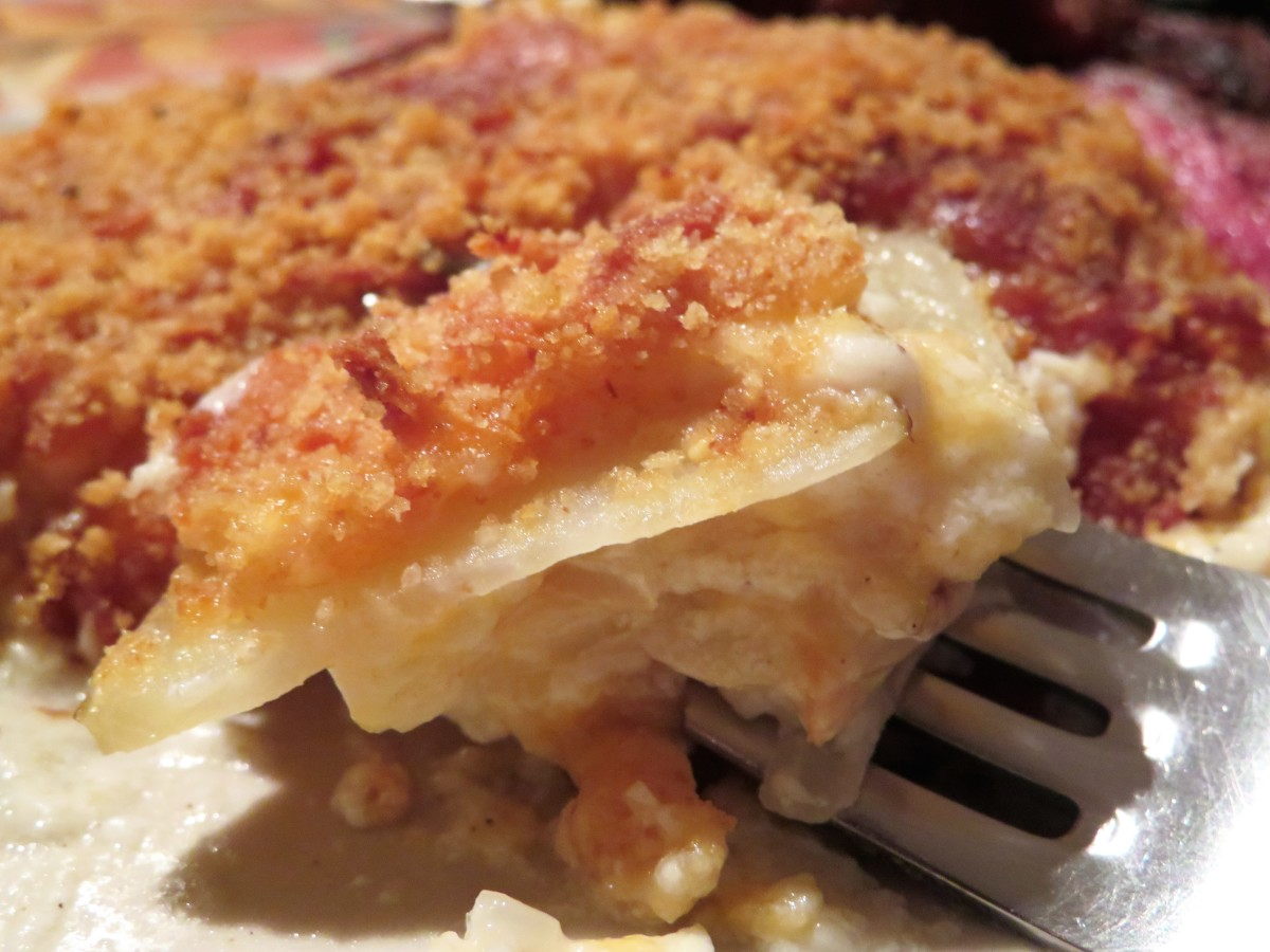 A forkful of scrumptious, cheesy scalloped potatoes!