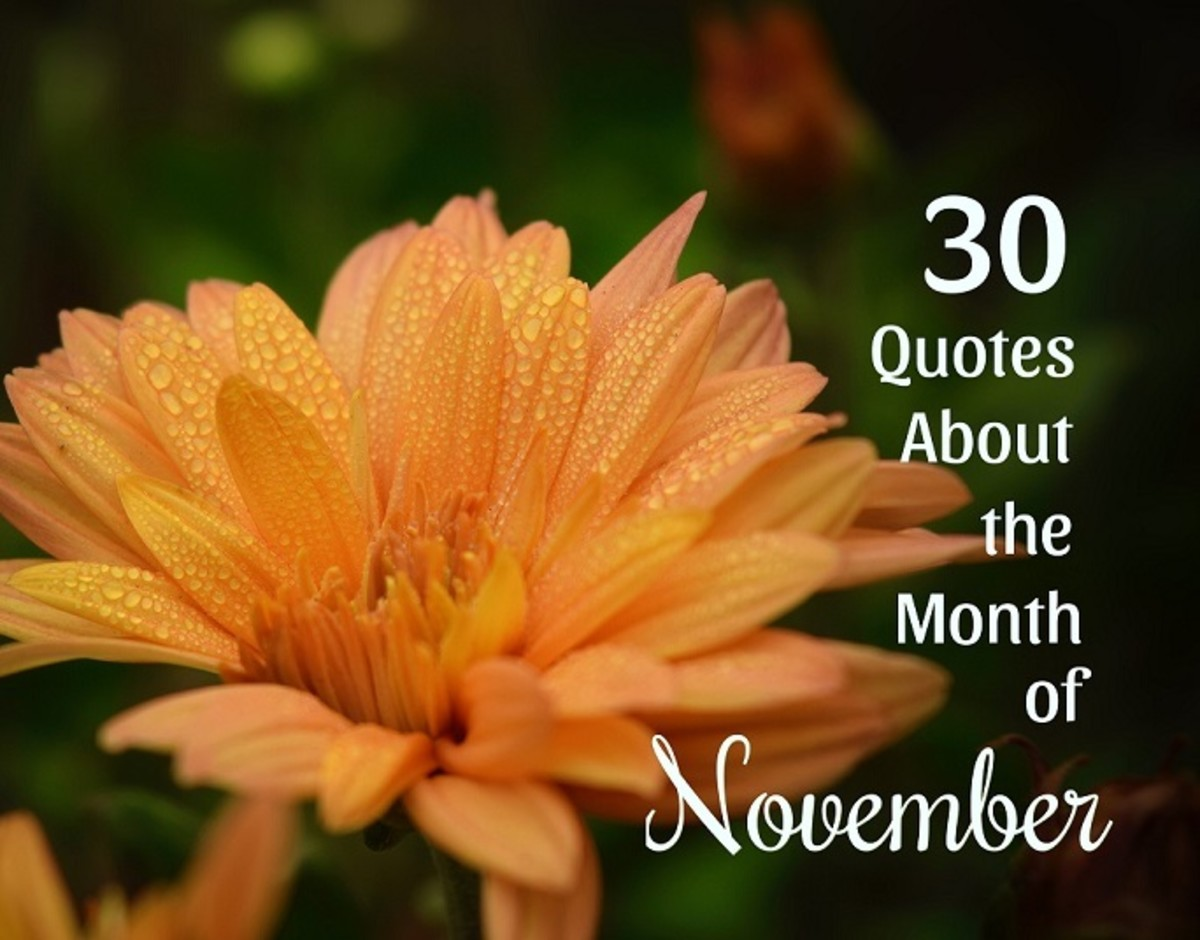 30 Quotes About November: Month of Thanksgiving and Reflection