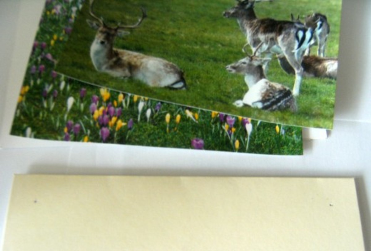 How to make greeting cards with photos