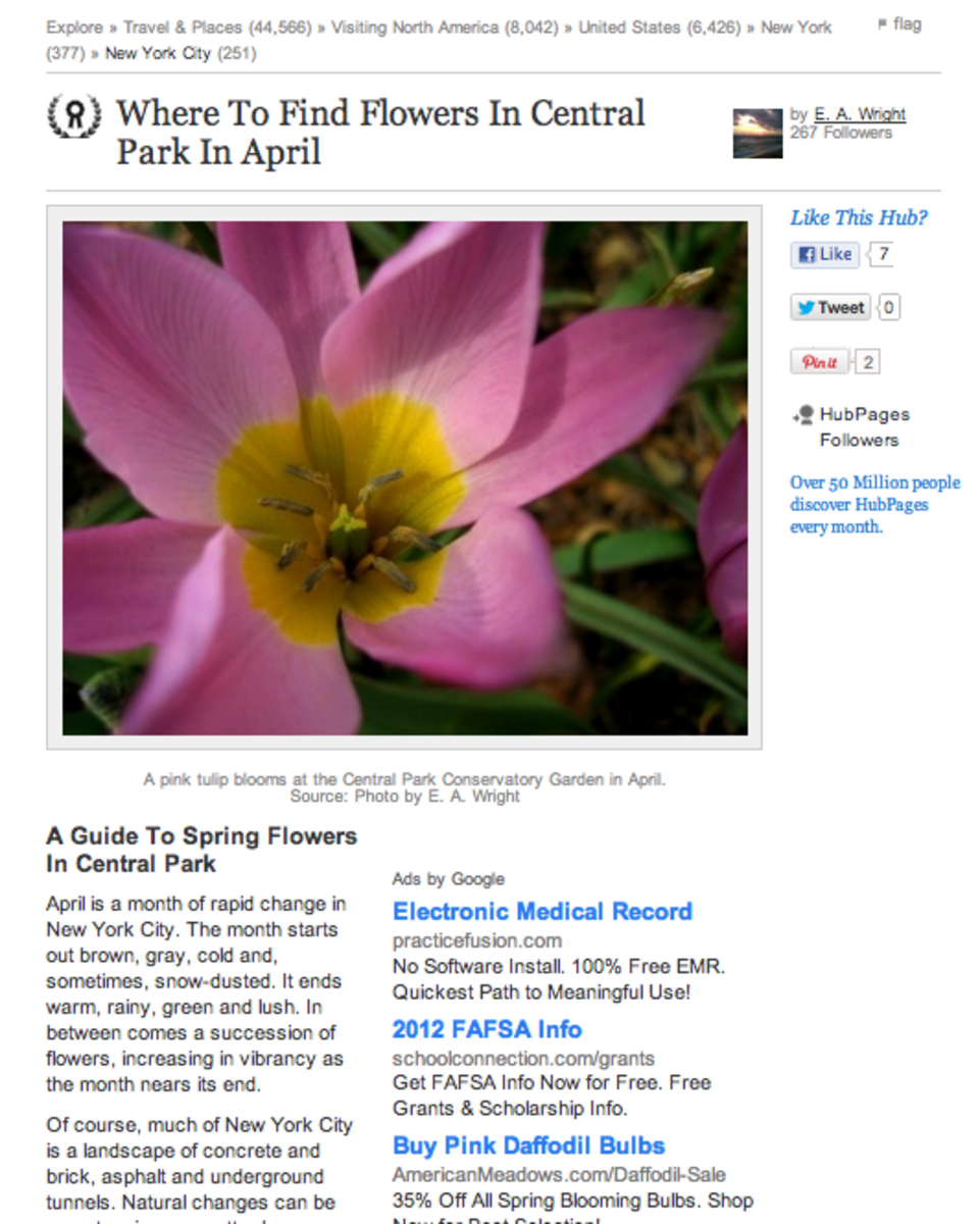 Want an example of an article with EXCELLENT Photo Capsule use? Stop by E. A. Wright's piece on  finding springtime flowers in Central Park.