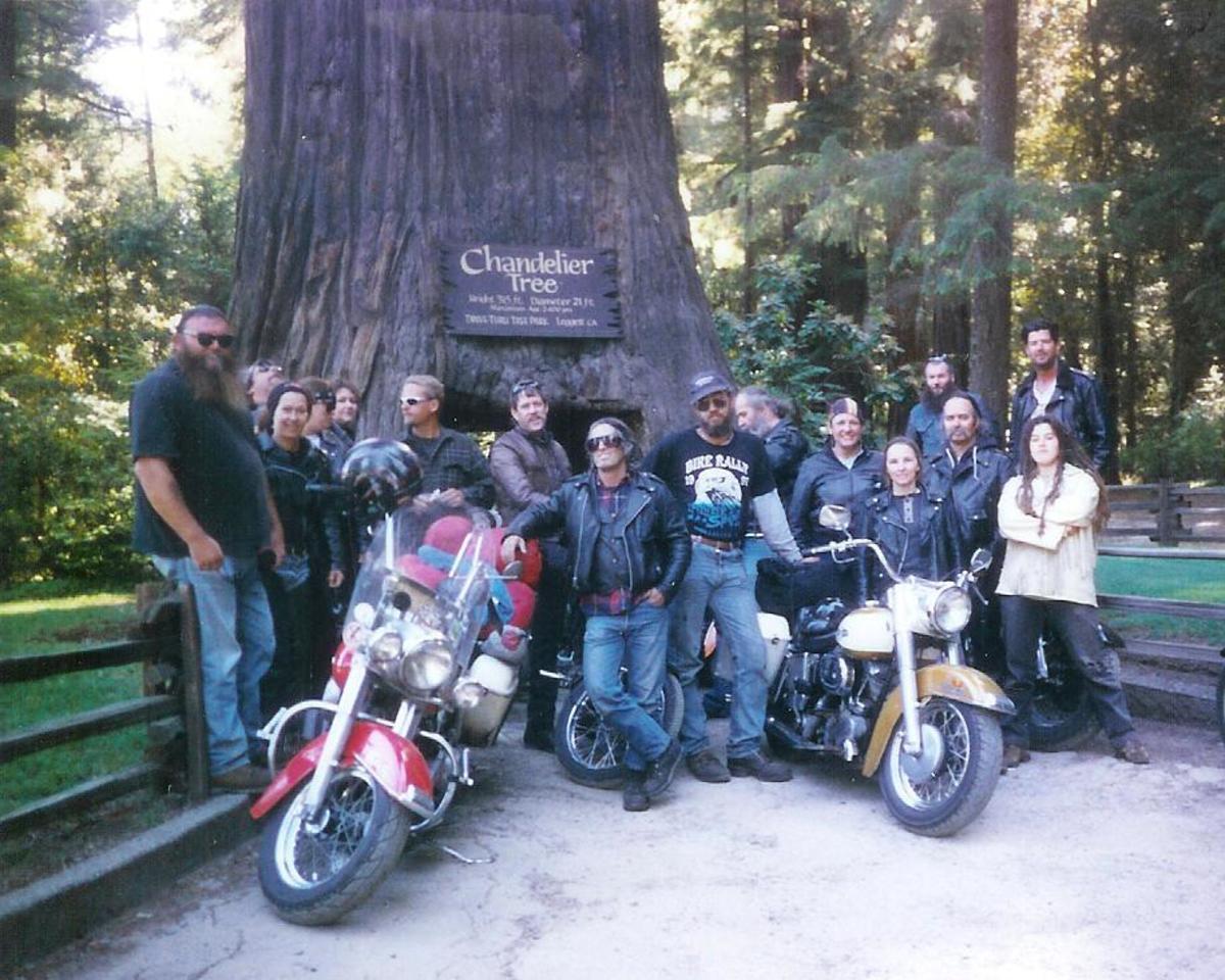 Bikers at the Drive-Thru Tree.