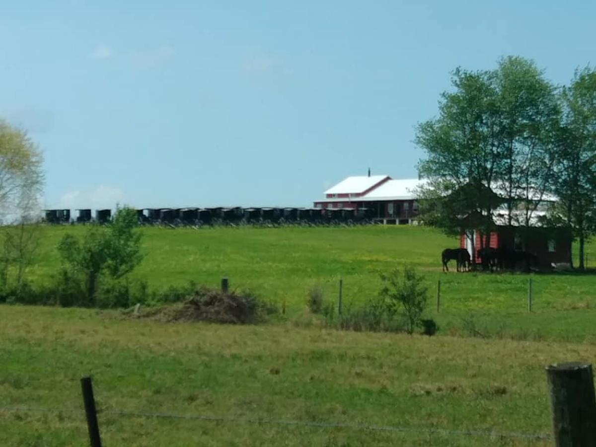 Sunday morning Amish church gathering in Morrison, TN.