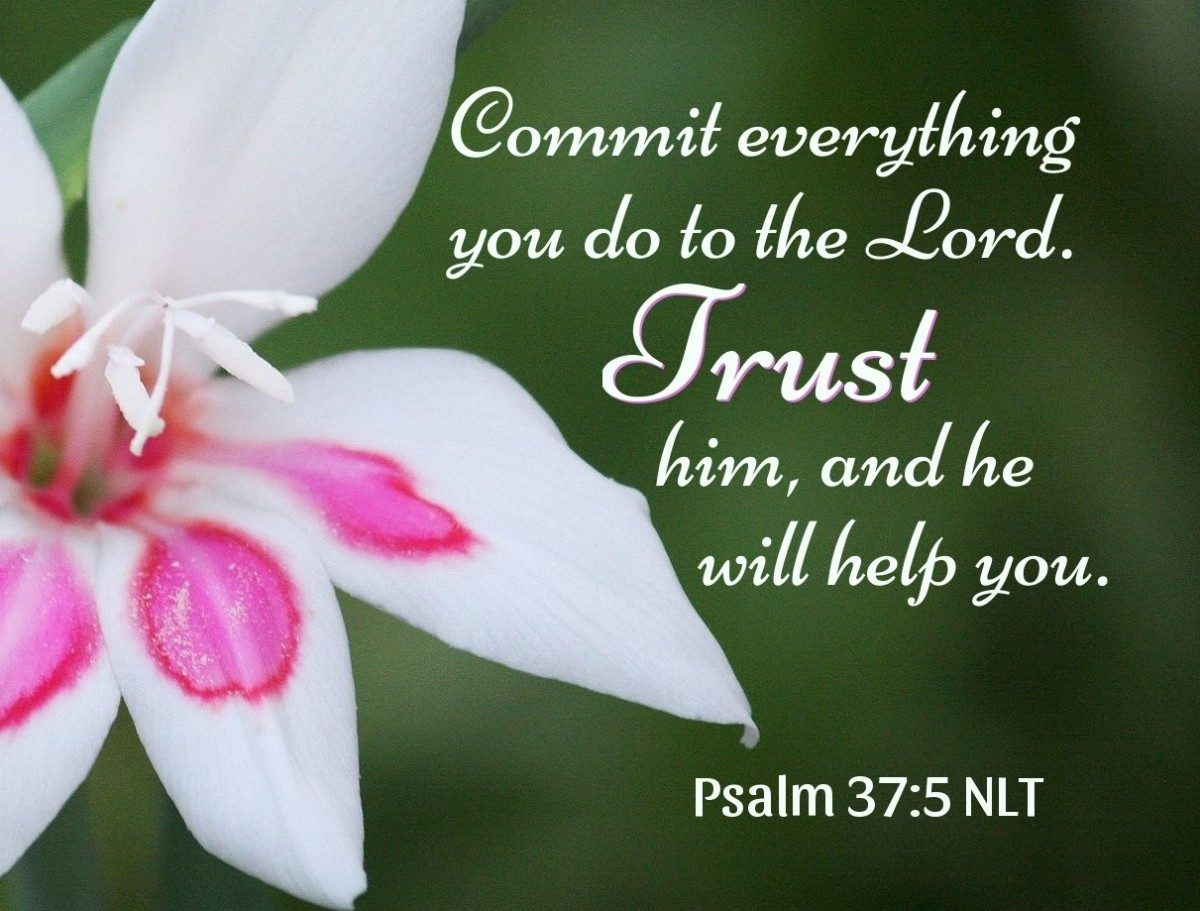 Commit everything you do to the Lord. Trust him, and he will help you.