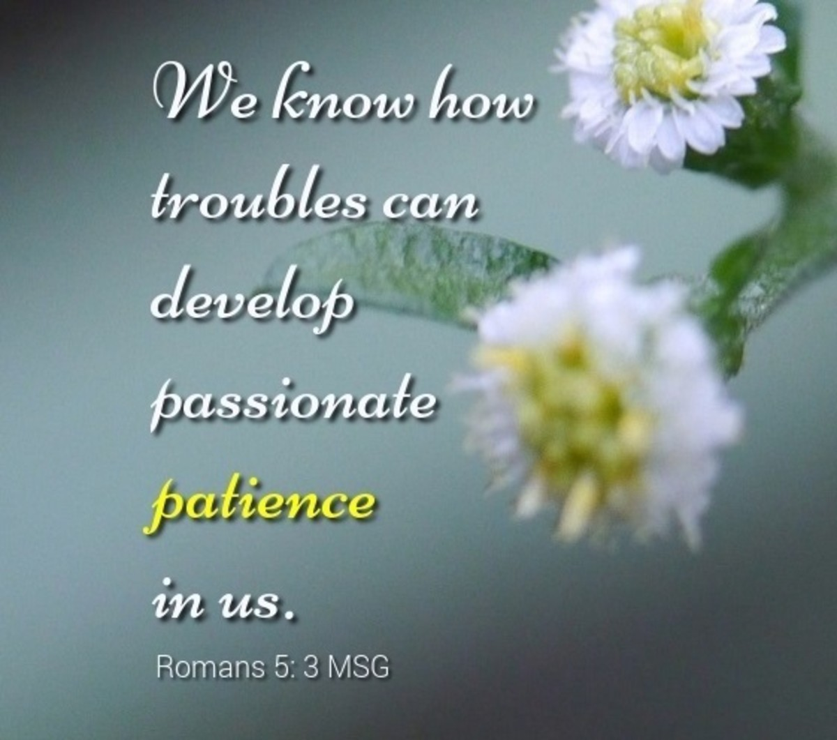 We know how troubles can develop passionate patience in us,