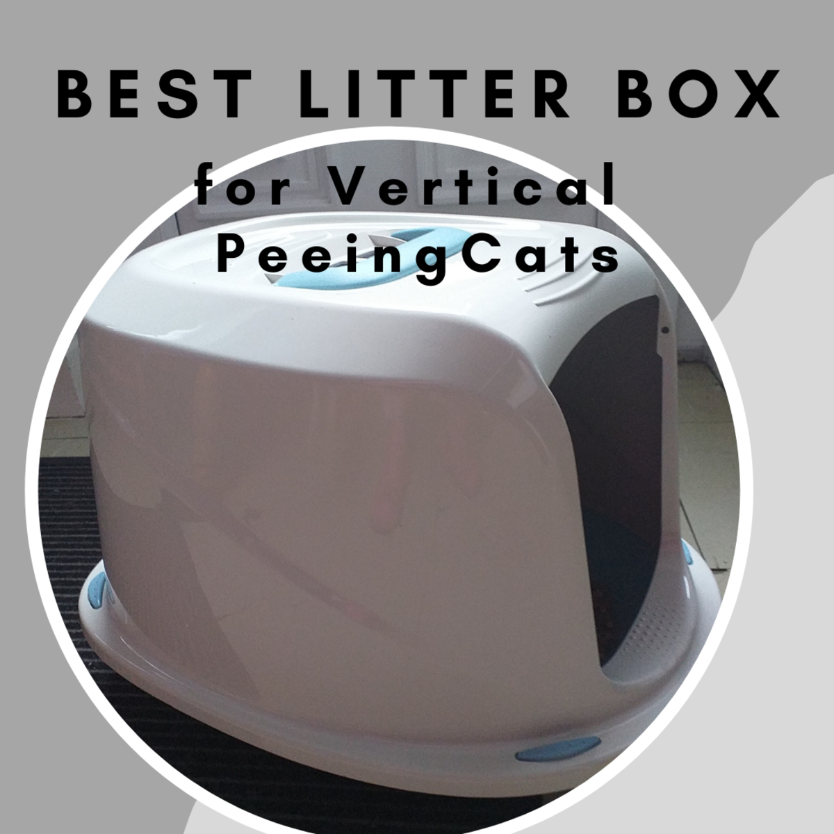 best-type-of-litter-box-for-a-vertical-peeing-cat