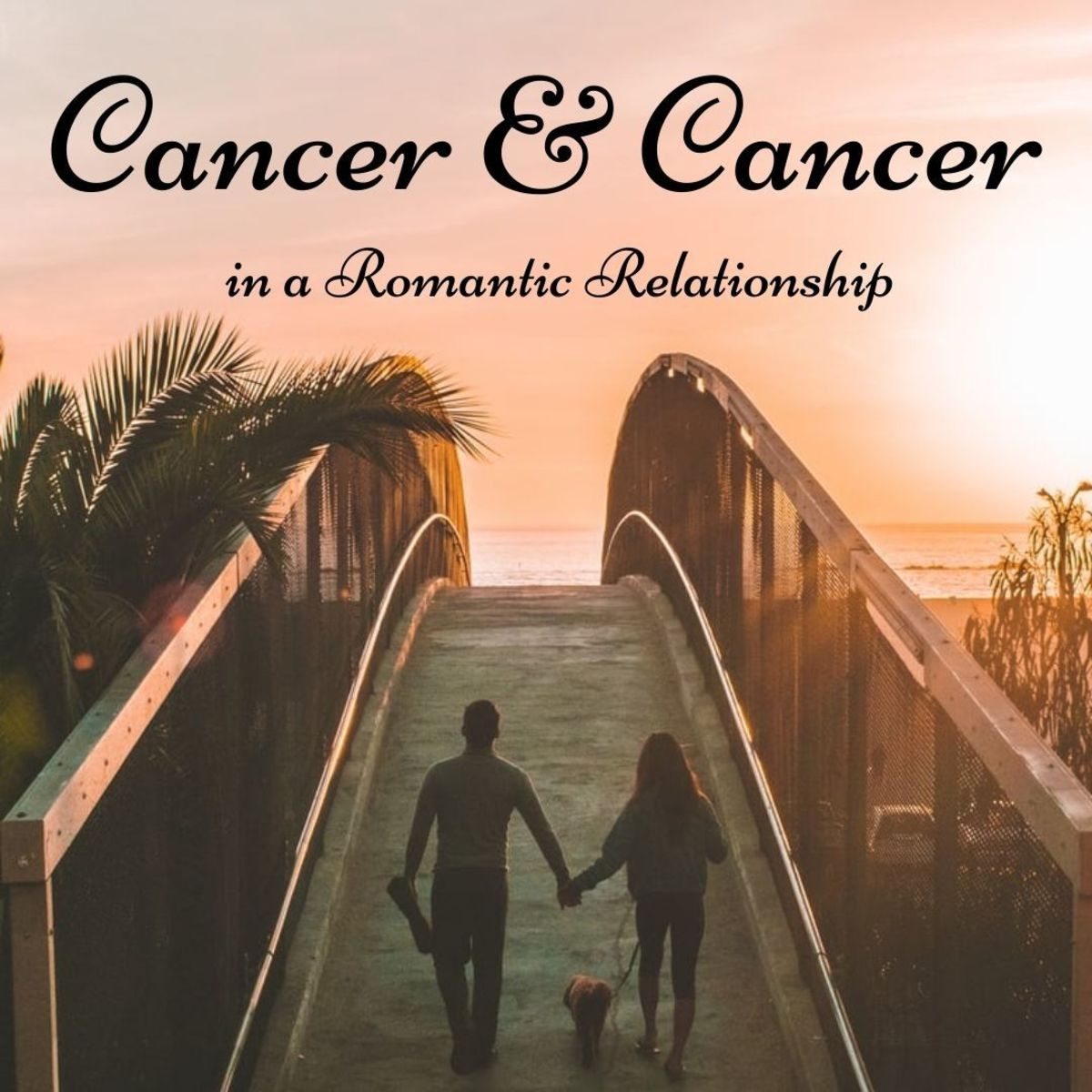 Relationship Compatibility for Cancer and Cancer ♋️
