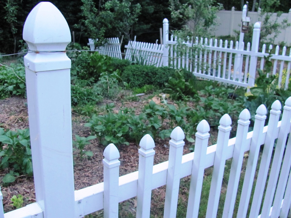 """A Frugal Engineer, my dad saved this section of fence from going to the dump.  If you look closely, you can see the band of wire on top.  That's his homemade """"electric fence.""""  Yep, it's actually electrified.  Don't touch it."""