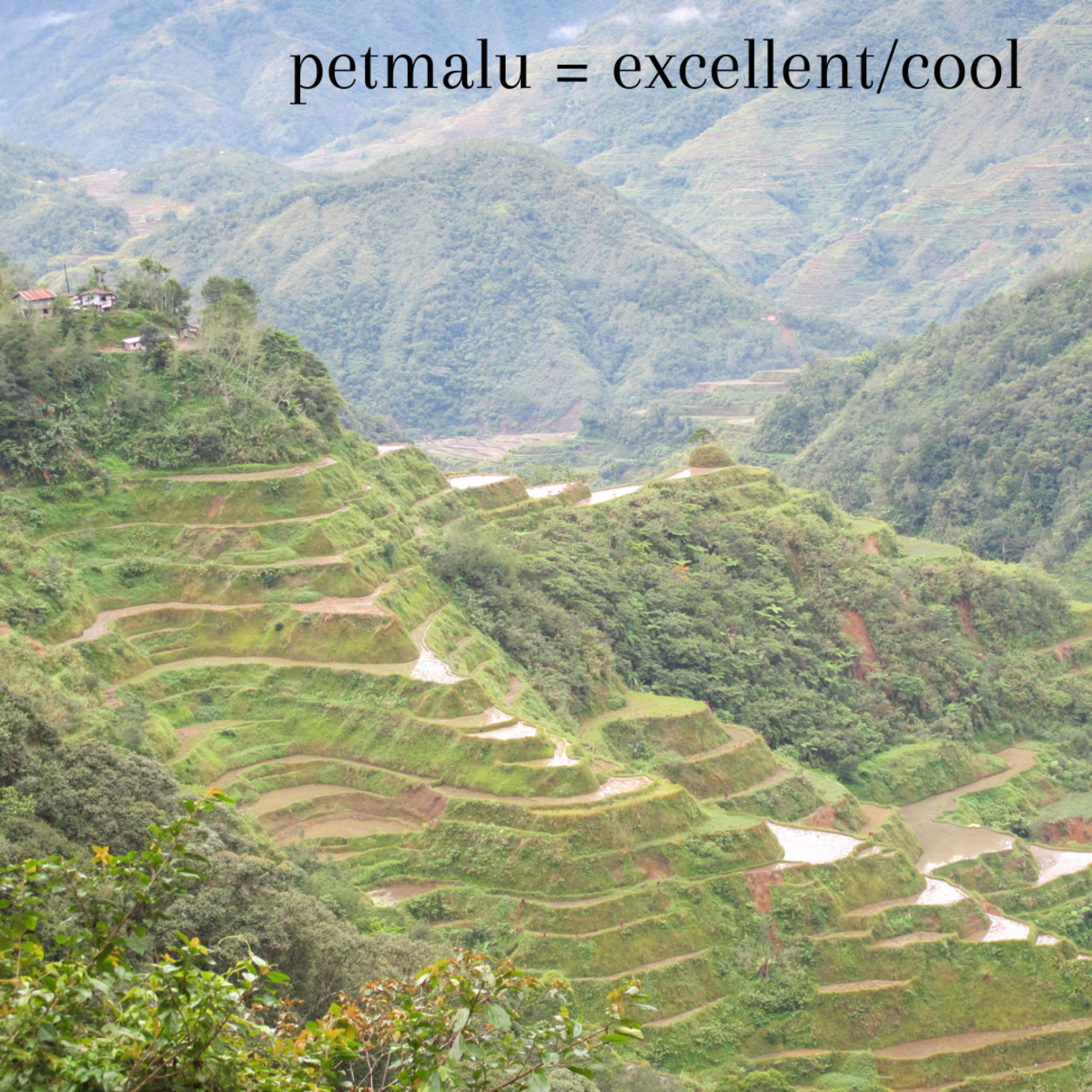 """""""Petmalu"""" is a Tagalog slang word that translates to """"extreme, exceptional, cool, excellent, or something extraordinary,"""" such as these magnificent rice fields."""