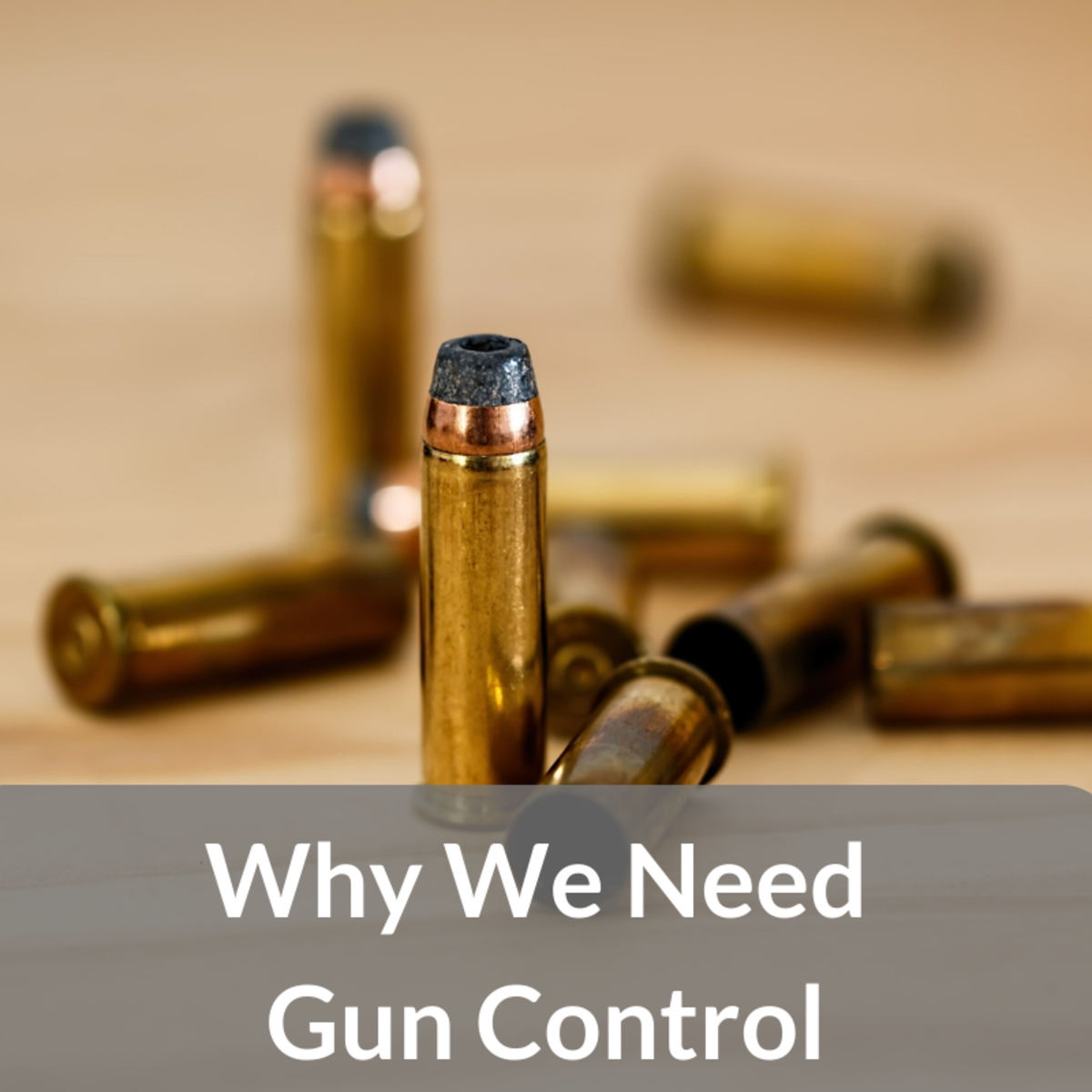 Why Gun Control Is the Answer