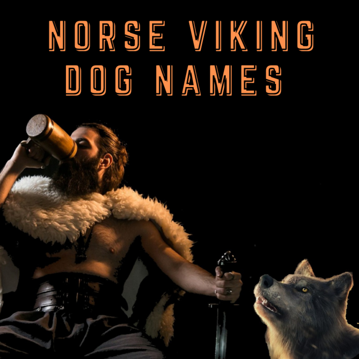 110+ Norse Viking Dog Names (With Definitions)