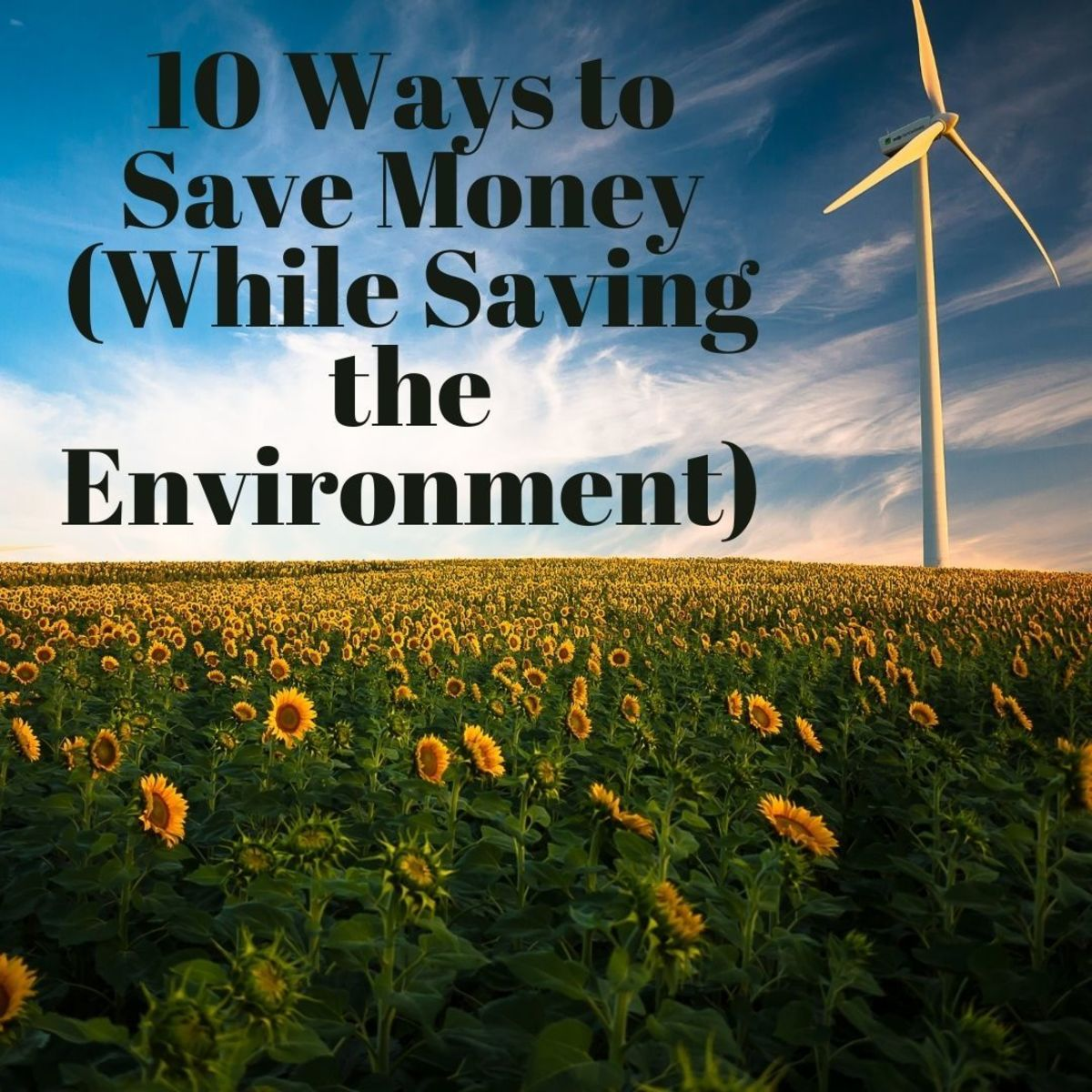 10 Ways to Save Money While Protecting the Environment