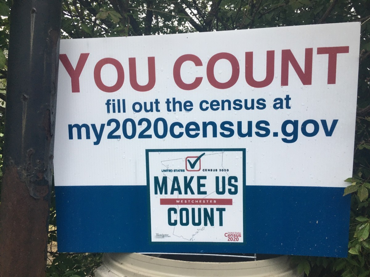 My Experience as an Enumerator During the 2020 Census