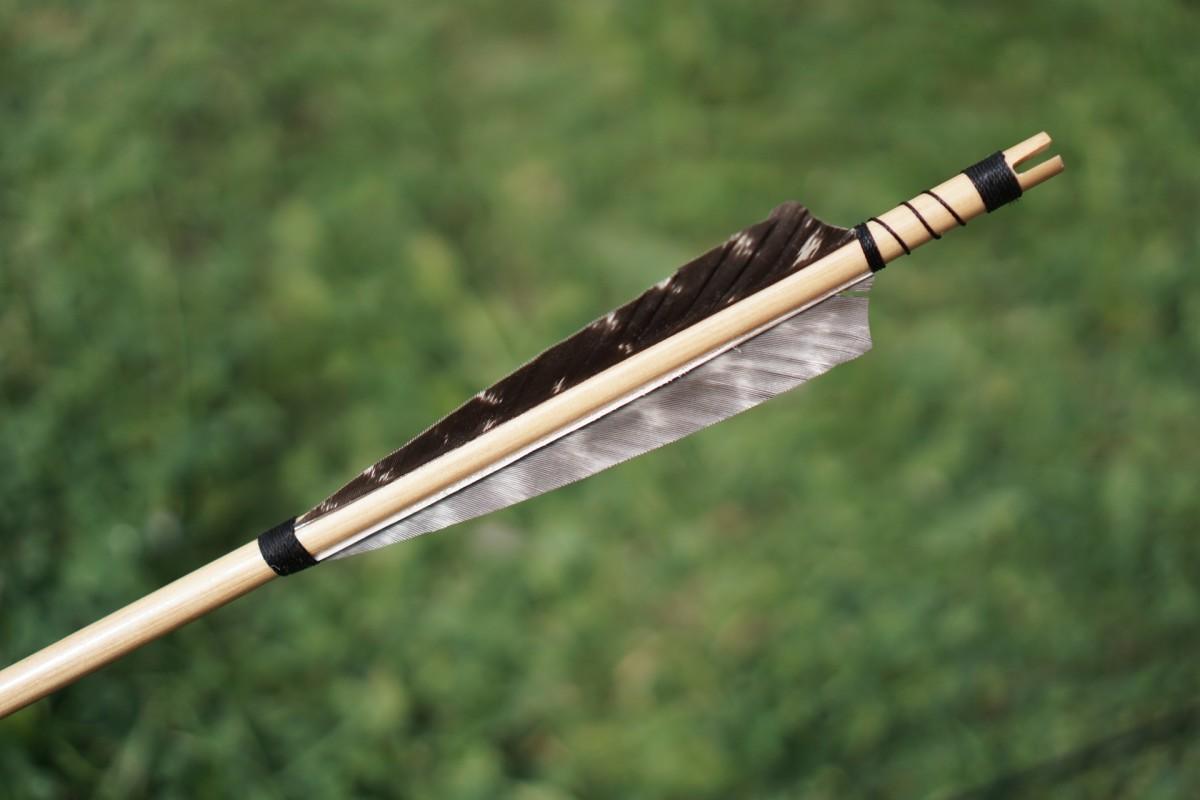Nock and fletchinig of an arrow