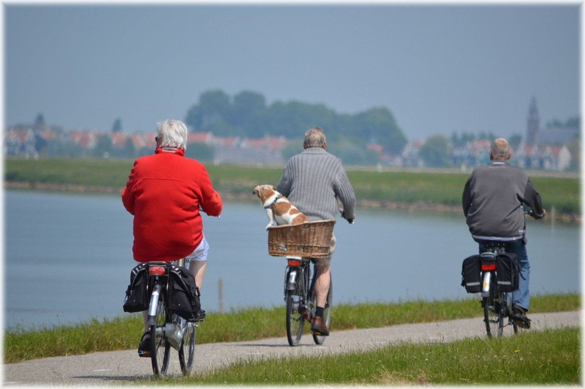 Cycling is a great way to exercise and socialize.  I observe that most cyclists in our town are young and that images of older cyclists on the Internet are taken in Europe or Asia.