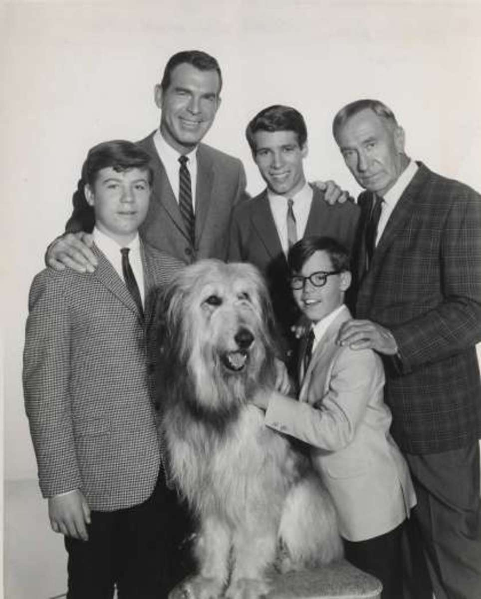 Tramp the Dog with the rest of the cast of My Three Sons (1960-1972)
