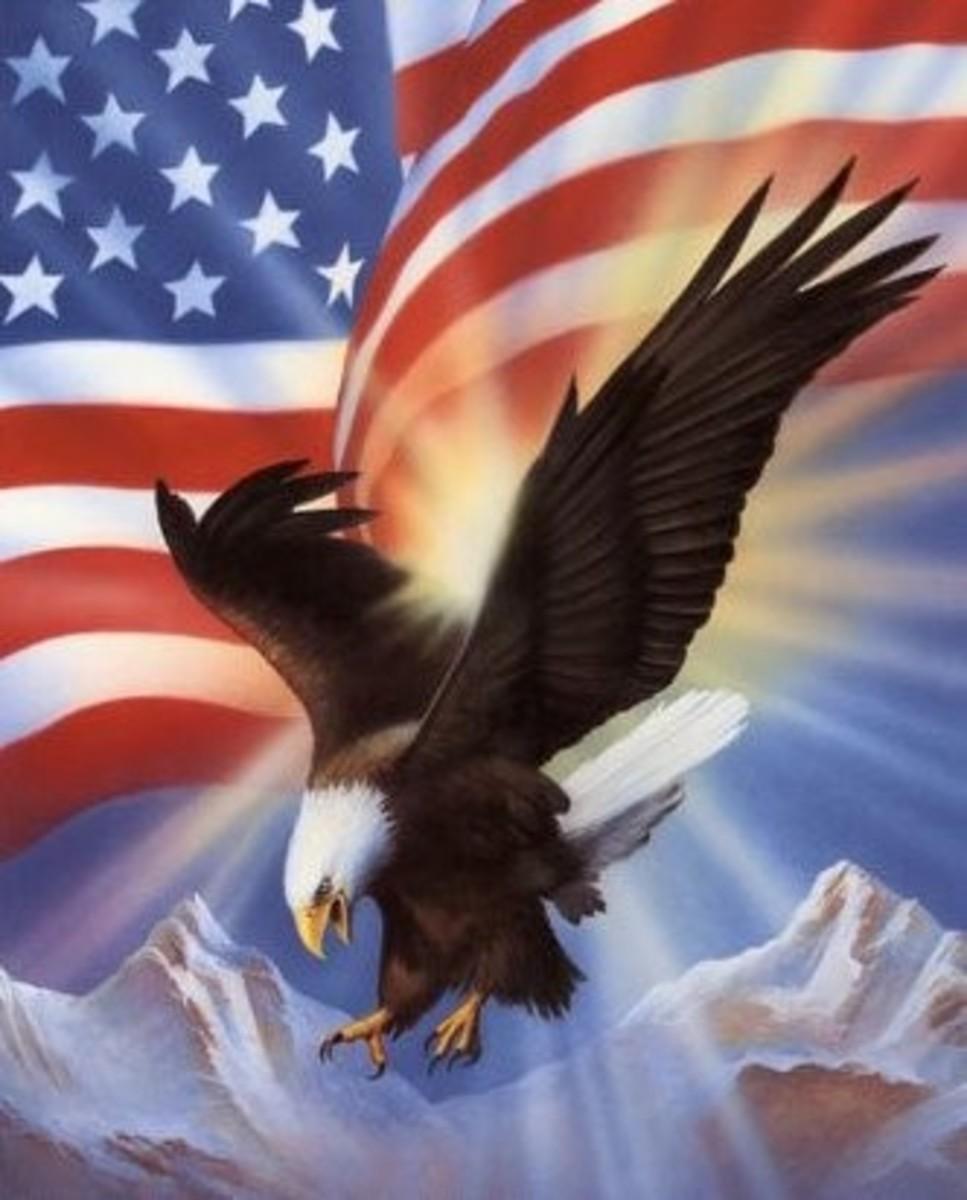 """Bald Eagle on Stars & Stripes"""