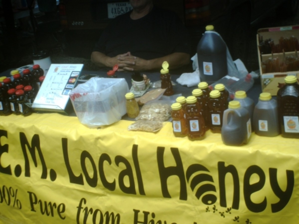 Organic Honey on Sale