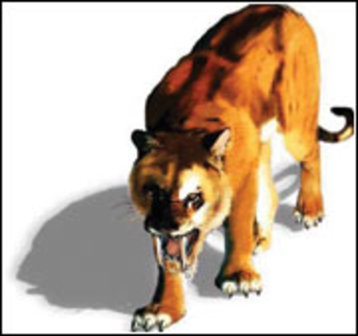 extinct-species-of-the-world