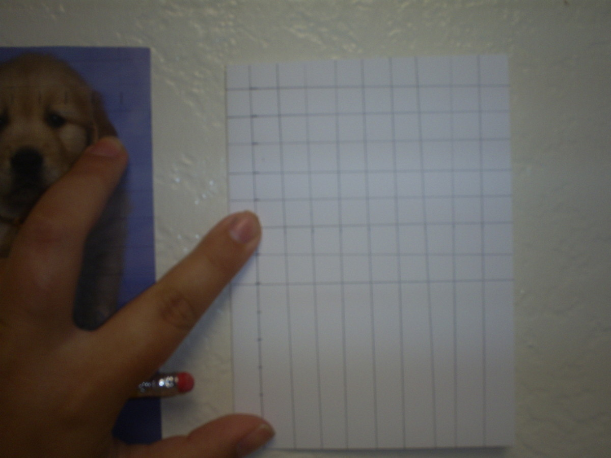 I am making a grid on the blank card.