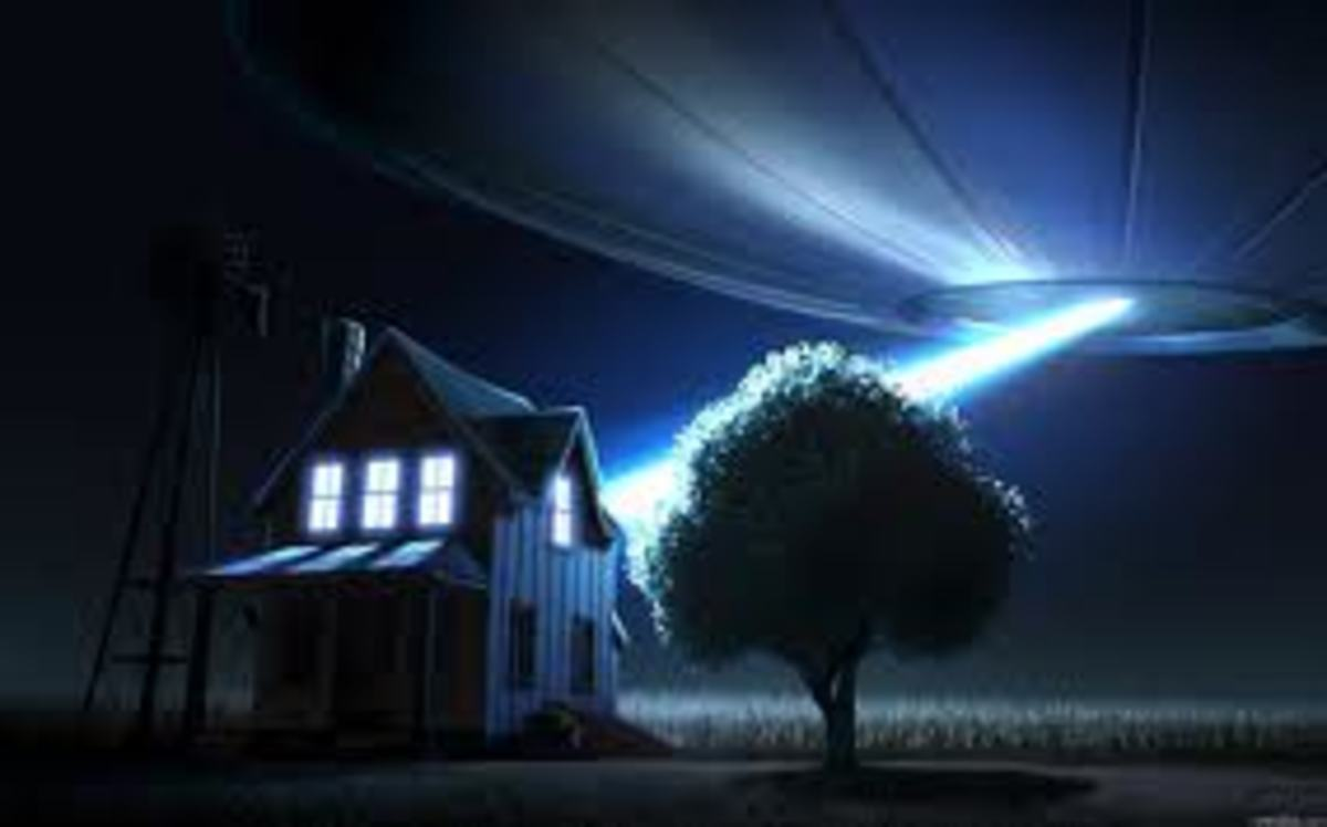 What Would You Do If A UFO Showed Up In Your Back Yard?