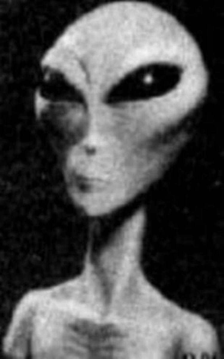 This is what an alien grey is said to look like.