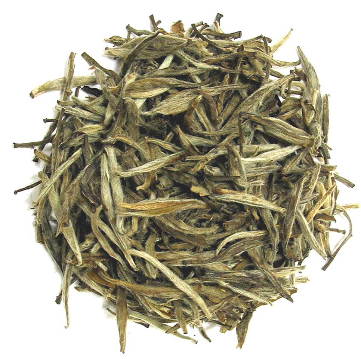 White tea has a light green color when dried, and is covered with a fine, silvery fuzz.