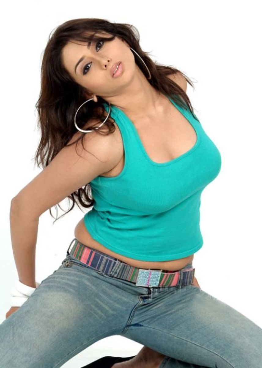 Namitha The Dream Girl