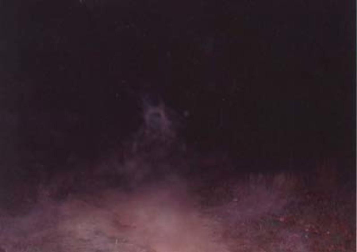 Ecto captured in Triangular Field