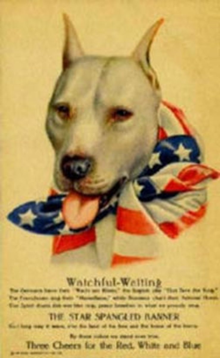 WW1 poster featuring a pit bull as representation of the U.S.