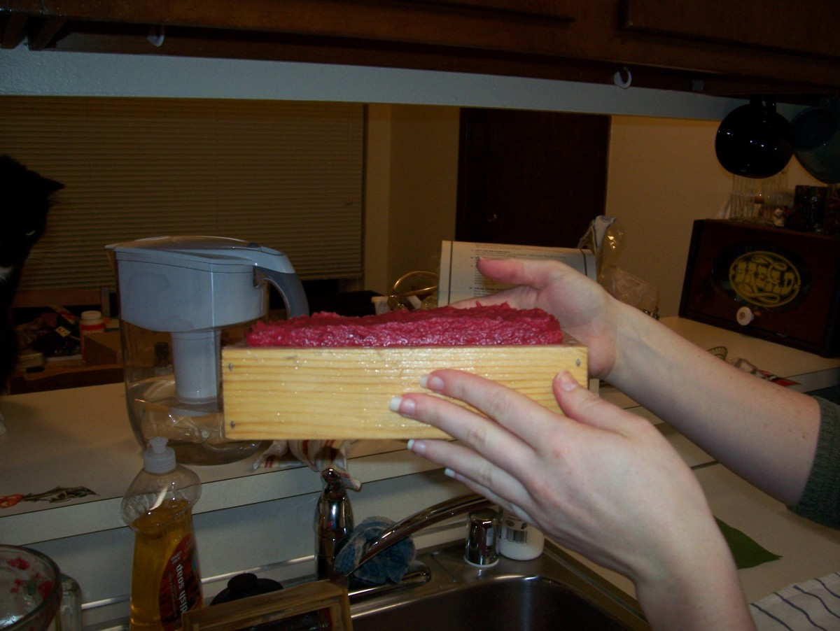 Step 6: See the layer of wet fiber/pulp.