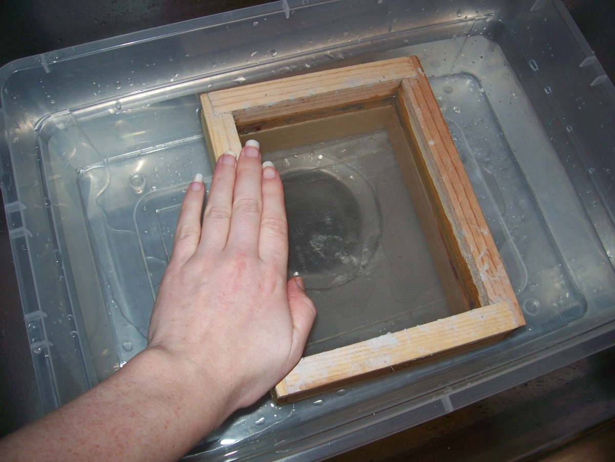 Step 4: Hold the deckle in the water with one hand.