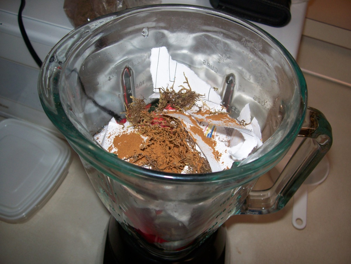 Step 3: Combine water, paper, and embellishments to blender.  Here, I added moss (for texture) and cinnamon (for scent).
