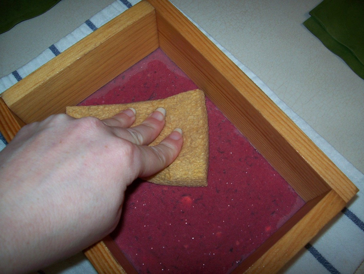 Step 7: Use the sponge on the screen to remove excess water.