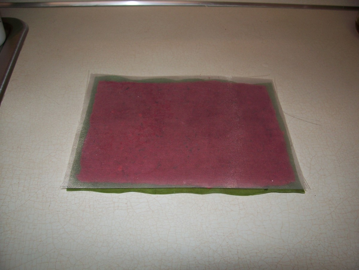 Step 8: Flip the screen over onto a dry blotter.