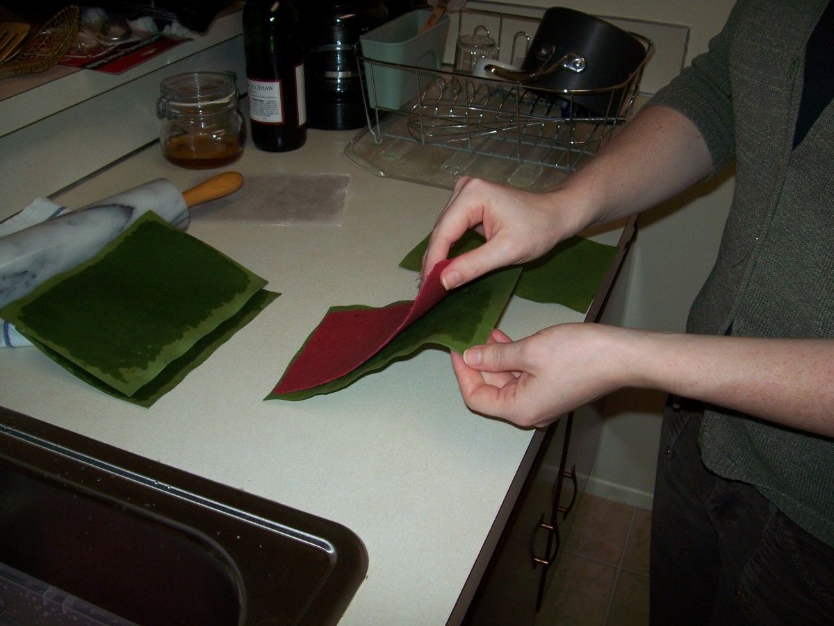 Step 9: Carefully remove the pulp sheet from the blotter paper.