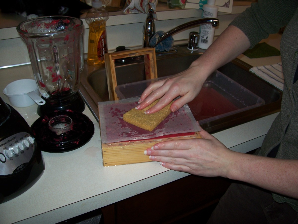 Step 7: Press the sponge against the screen, squeezing out the excess water.