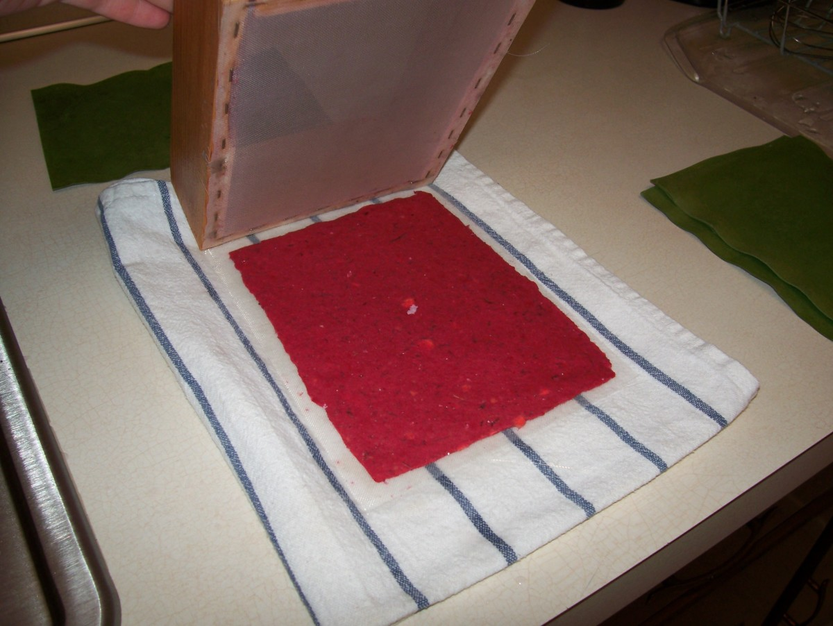 Step 7: Remove the deckle, leaving the pulp on the loose screen.