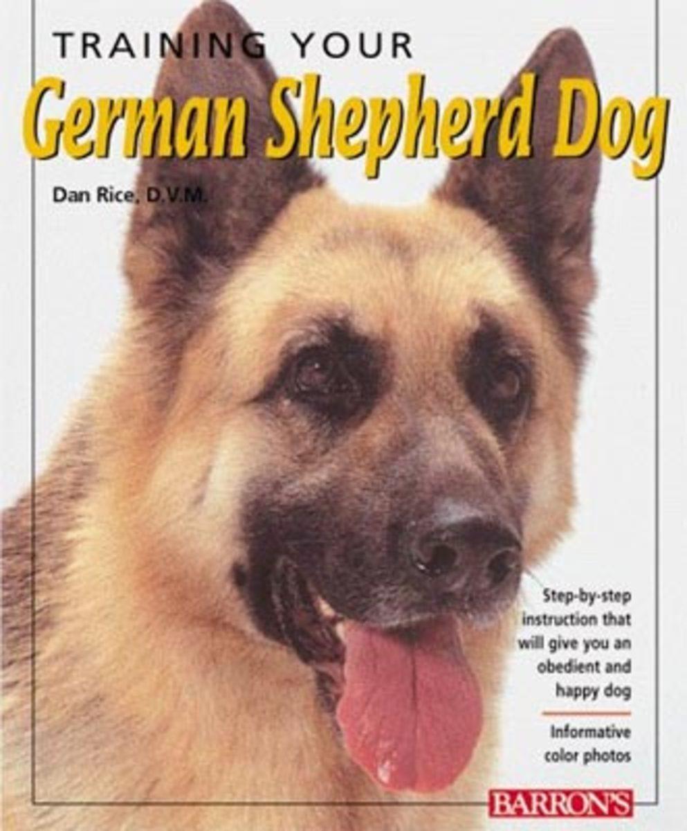 owning-a-german-shepherd