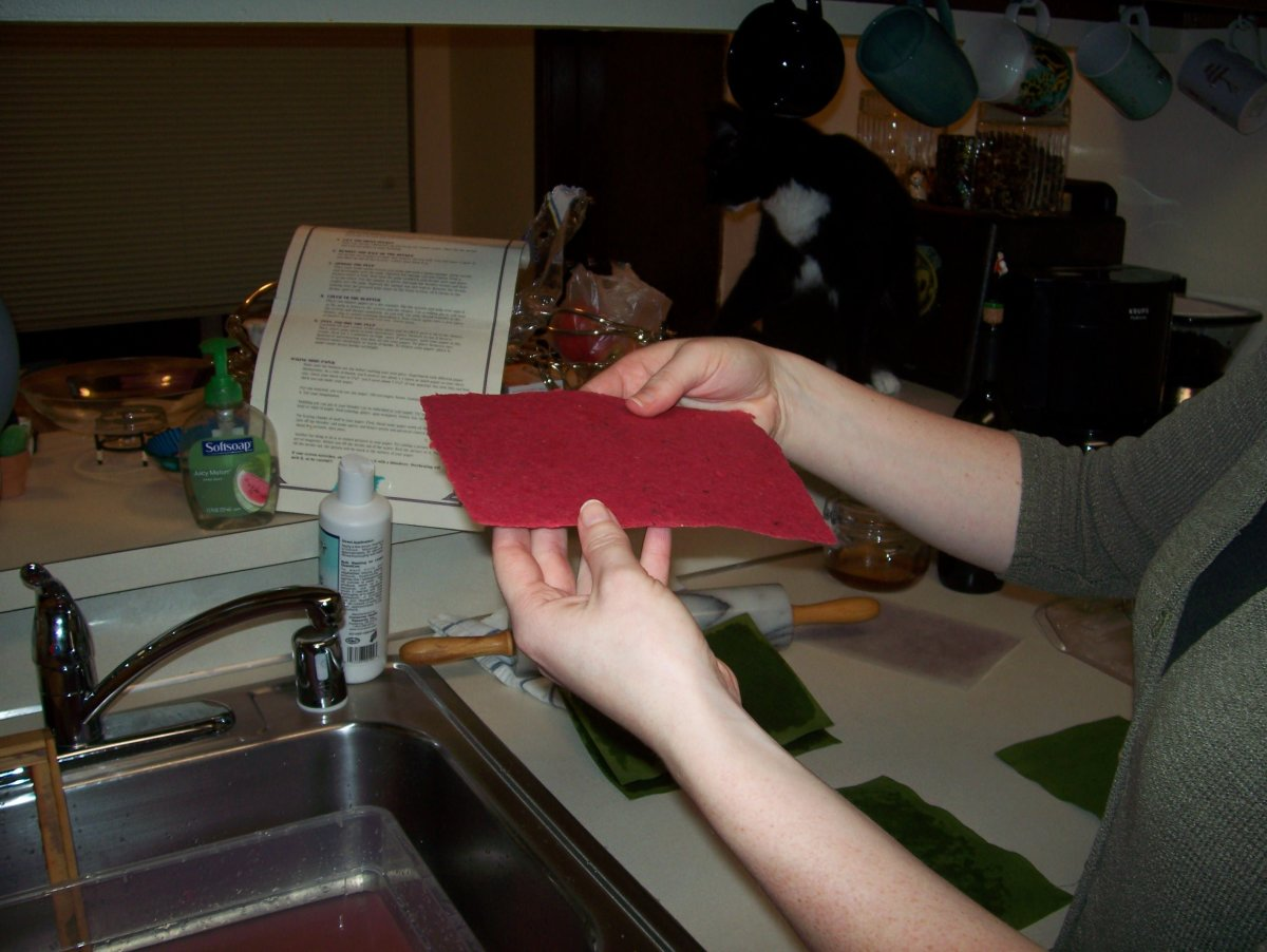 Step 9: Here is your first piece of homemade paper.  Now, set it out to dry.